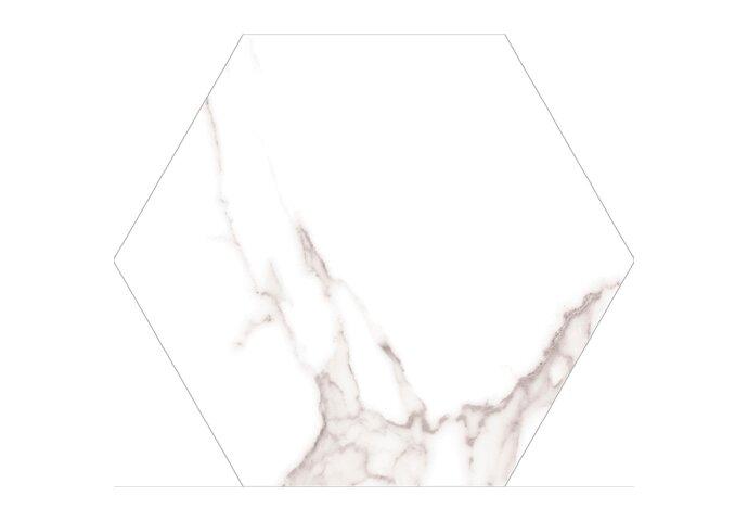 Hexagon Wandtegels Azulejo Carrara 22.5x25.9 cm (doosinhoud 0.73m2)